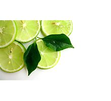 Lime Fresh Photographic Print