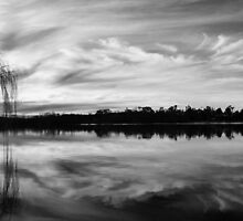 Mannum Nights by Steve Chapple