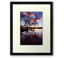 Mannum Willows Framed Print