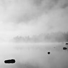 Lake of Aumar - Fog by Isard