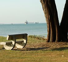 Bench by the sea by Aneurysm