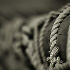 Rope Abstract by Bob Farrell