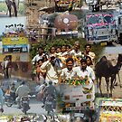 Montage -   	India on the road by cascoly