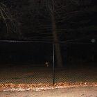 Orb Near Leaning Cross #2 by impala01gurl