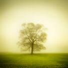 Bare by jan lakey © Passionate Pixels