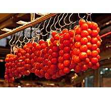 Hanging Tomatoes   Photographic Print