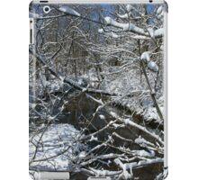 Bridal Veil iPad Case/Skin