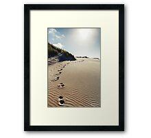 NEW ZEALAND:LONE BEACH Framed Print