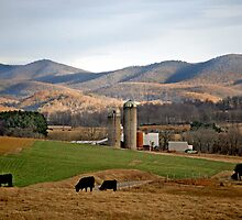 Rural Retreat, Va by susi lawson