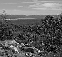 Views of Moora Moora Reservior by Jennifer Craker