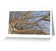 Blue Skies 008 Greeting Card