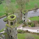 Blarney Castle Ireland by jaime92