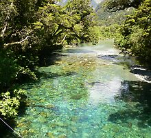 Milford Track 12 by PhotosByG