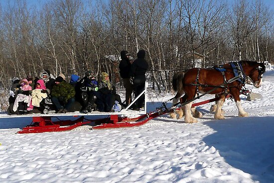 Family Sleigh Ride by Larry Trupp