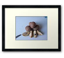 Sapodilla Fruit Framed Print
