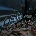 Cobra.....Left For Dead by nightsblood