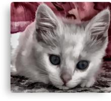 A Kitten Named Raiden Canvas Print