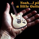Little Guitar by Johnny Furlotte
