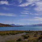 Lake Tekopa, New Zealand by Phil413Jay