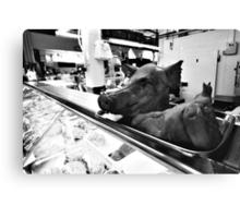 Pig's Head Canvas Print