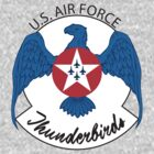 Air Force Thunderbirds by block33