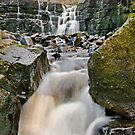 Lower Whitfield Gill Waterfall near Askrigg by Steve  Liptrot