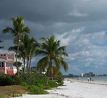 Southwest Florida by StudioN