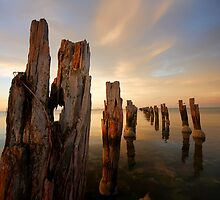 Old Pier Light  by John Conway