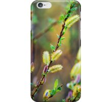 Pussy Willow Abstract iPhone Case/Skin