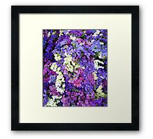 Summer Flower_Multi Colour Framed Print