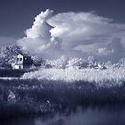 Rural 2 -#3 by danise tang