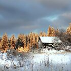 Shack In Winter by dougf