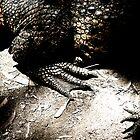 Prehistoric by SFMARLER