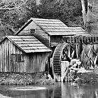 Mabry Mill, BlueRidge Parkway  Winter Cold by Dianna Tilley