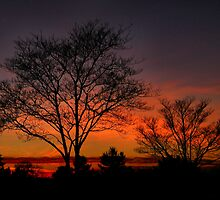 Hermitage Sunset by Marylee Pope