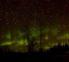 Dec.28th Auroras by peaceofthenorth
