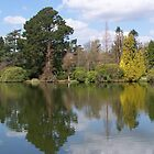Sheffield Park Gardens in the Summer by sjmphotos