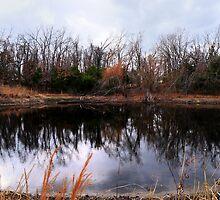 Pond Life by CjbPhotography