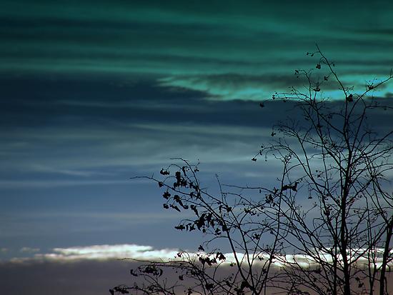 Feeling blue tonight by Cricket Jones