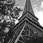 Eiffel Tower, Las Vegas by Jaymes Williams