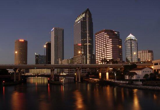 Tampa Bay Florida by David Lee Thompson