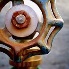 Rusty Knob by Paul Navarrette