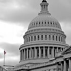 US Capitol Building Number 2 by Jaymes Williams