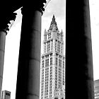 Woolworth Building, New York City by Jaymes Williams
