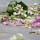 Leftover Lotus by FlyAwayPeter