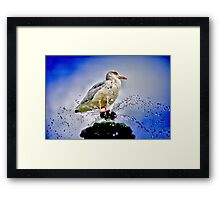 Squirt Framed Print