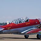 "North American AT-6 Harvard — SAAF 7001 — ""Inkwazi"" by RatManDude"