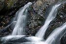 Foote Brook, Lower Falls, Autumn by Stephen Beattie
