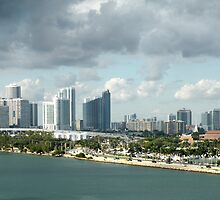 Miami View by Rosalie Scanlon