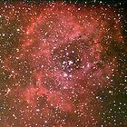 rosette nebula by 3rdrock